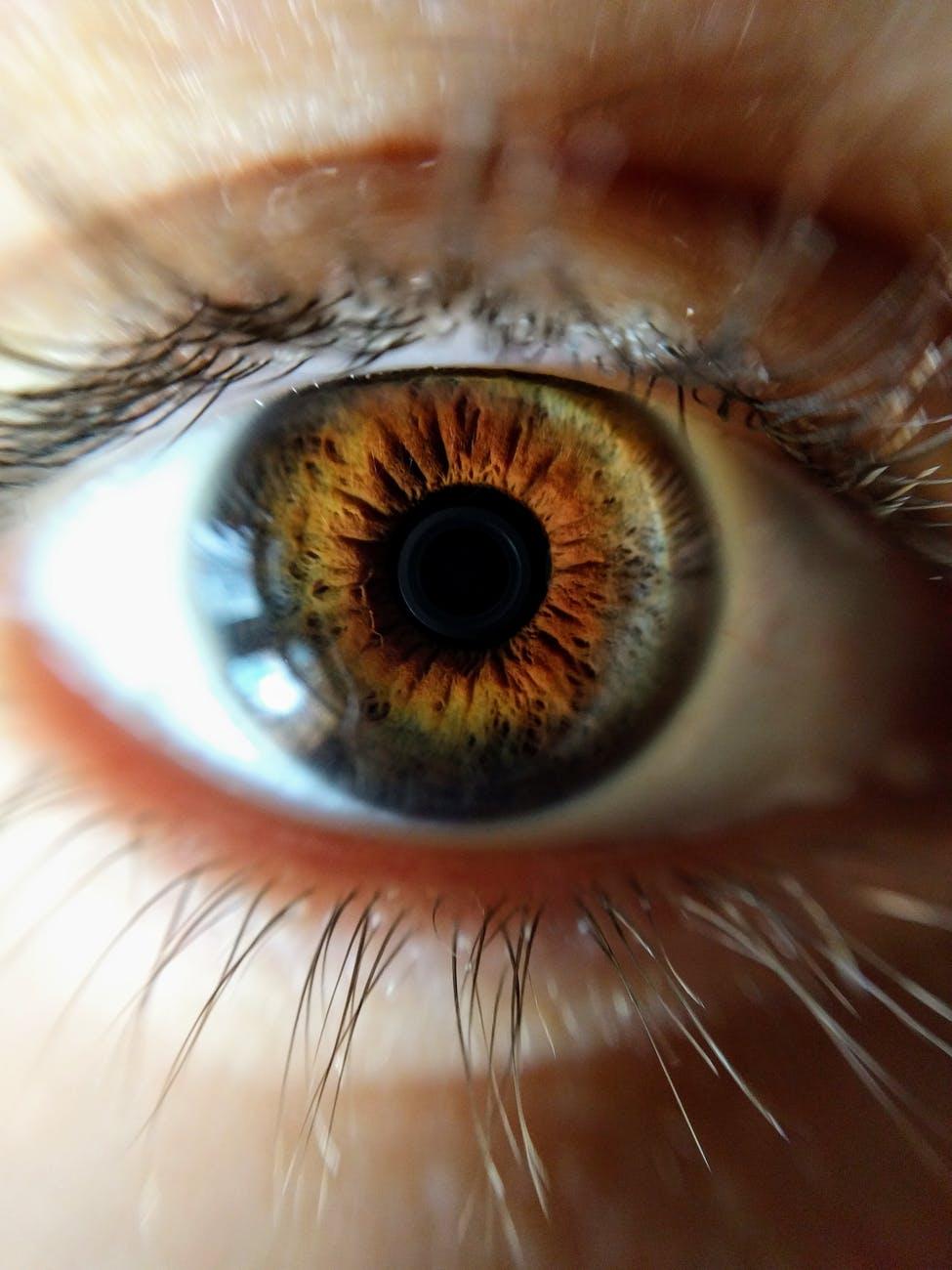 human eye closeup photo